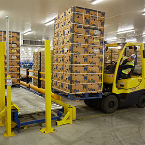 A forklift truck loading pallets of bananas onto a conveyor